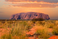 3-Day 4WD Tour from Alice Springs: Kings Canyon, Uluru (Ayers Rock) and Kata Tjuta Photos