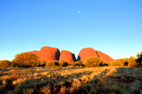 3-Day Ayers Rock, Olgas and Kings Canyon Camping Safari Photos