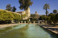 3-Night Andalucia Highlights Tour from Cordoba Including Seville and Granada  Photos