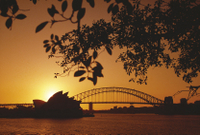 4-Day Sydney Tour: City Sightseeing, Sydney Harbour Cruise and the Blue Mountains Photos