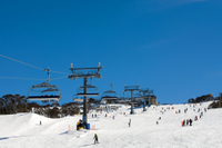 6-Day Thredbo or Perisher Blue Snow Adventure from Sydney Photos