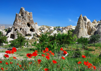 7-Day Turkey Tour from Kusadasi: Istanbul, Pamukkale, Ankara, Cappadocia and Ephesus Photos