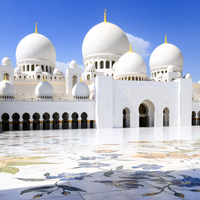 Abu Dhabi Shore Excursion: Sheikh Zayed Mosque and Falcon Hospital Photos