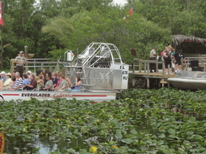 Miami Everglades Airboat Adventure with Transport Photos