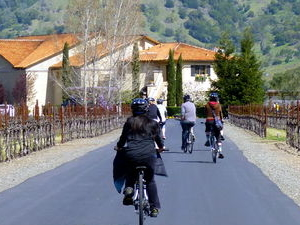 Wine Country Sip 'n' Cycle Bike Tour Photos