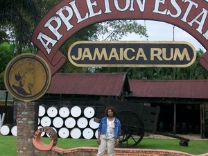 Black River Safari, YS Falls and Appleton Rum Estate Tour from Negril Photos