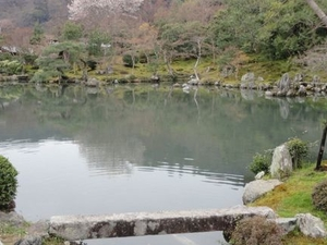 Arashiyama and Sagano Morning Walking Tour Photos