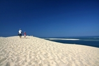 Arcachon Half-Day Trip from Bordeaux Including Pyla Dune and Oyster Tasting Photos