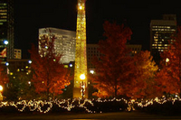 Atlanta Christmas Lights Segway Tour Photos