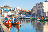 Aveiro Tour from Porto Including Moliceiro Cruise Photos