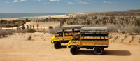 Baja Ranch Tour and Camel Safari from Los Cabos Photos