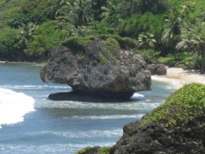 Beautiful Barbados Coastal Sightseeing Tour Photos