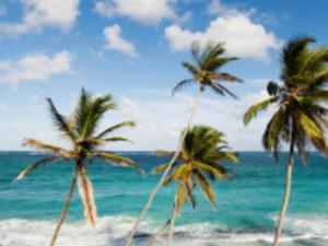 Barbados Shore Excursion: Barbados in a Day Tour Photos