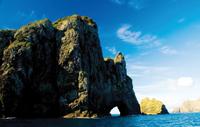 Bay of Islands Cape Brett 'Hole in the Rock' Cruise Photos