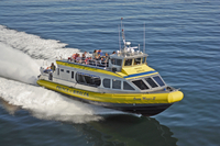 Best of Victoria Tour: Whale Watching, Butchart Gardens and Sunset Cruise from Vancouver Photos