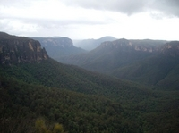 Blue Mountains Deluxe Overnight Eco Experience - Small Group Photos