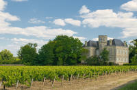 Bordeaux Shore Excursion: Full-Day Private Medoc Wine Tour Photos