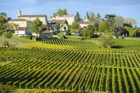Bordeaux Shore Excursion: Private St-Emilion Half-Day Trip Photos