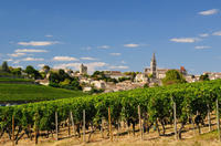 Bordeaux Super Saver: Médoc Wine Tour and Lunch plus St-Emilion or Graves Photos