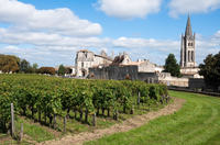 Bordeaux Super Saver: Small-Group Wine Tasting and Lunch plus St-Emilion Wine Tour Photos