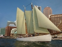 Boston Tall Ship Day Cruise Photos