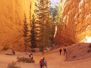 3-Day National Parks Camping Tour: Grand Canyon, Zion, Bryce Canyon and Monument Valley from Las Vegas Photos