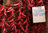 Budapest Cooking Class and Food Market Tour Photos