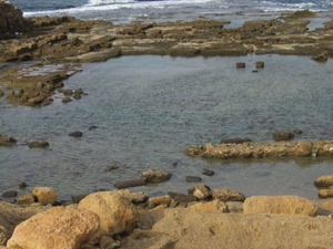 Caeserea, Rosh Hanikra and Acre Day Trip from Tel Aviv Photos