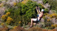 Catalina Island Zipline Eco-Tour from Anaheim or Los Angeles Photos
