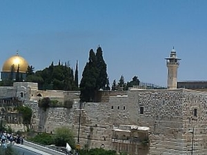 Jerusalem Half Day Tour: Dome of the Rock and Western Wall Photos