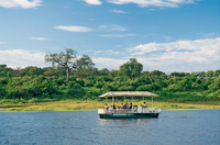 Chobe River Cruise with Transport from Kasane