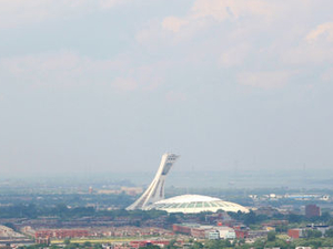Montreal Tower Observatory Admission plus Optional Olympic Park or Biodome Tour Photos