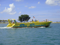 Clearwater Beach Day Trip from Orlando with Sea Screamer Boat Ride  Photos