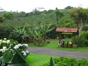 Poas Volcano, Doka Coffee Estate and Sarchi Arts and Craft Photos
