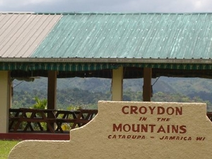 Croydon Plantation with Jamaican Lunch Photos