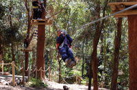 Currumbin Wildlife Sanctuary: Green Challenge Zipline Canopy Tour Photos