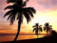 Day Trip to Key West Photos