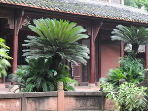Private Tour: Day Trip to the Leshan Grand Buddha from Chengdu Photos