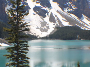 Mountain Lakes and Waterfalls Day Trip from Banff Photos