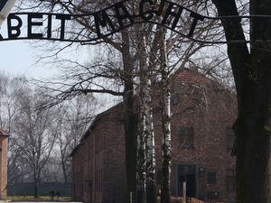 Krakow Super Saver: Auschwitz-Birkenau Half-Day Tour plus Wieliczka Salt Mine Half-Day Tour Photos