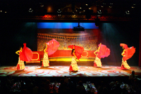 Flamenco Show with Optional Dinner and Transport from Costa Brava Photos