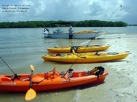 Florida Everglades Small-Group Eco-Adventure by Foot, Kayak and Boat Photos