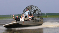 Florida Everglades Swamp Tour and Airboat Ride from Orlando Photos