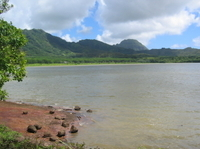 Fresh-Water Bass Fishing Trip on Kauai Photos