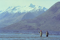 Full Day Fishing Tour from Christchurch Photos