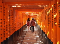 Fushimi Inari and Sake Brewery Tour Photos