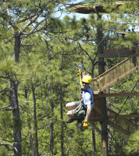 Gatorland Orlando Zipline Adventure Photos