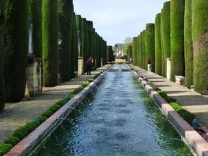 Seville In One Day: Santa Cruz Quarter, Royal Alcazar Palace, Seville Cathedral, Royal Maestranza Bullring and River Cruise Photos