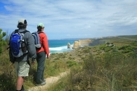 Great Walks of Australia: 4-Day Twelve Apostles Walk Photos