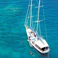 Green Island Sailing Cruise from Cairns Photos